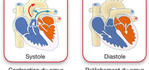 La pression artérielle