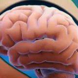Précis d'histoire sur la mesure de la tension artérielle
